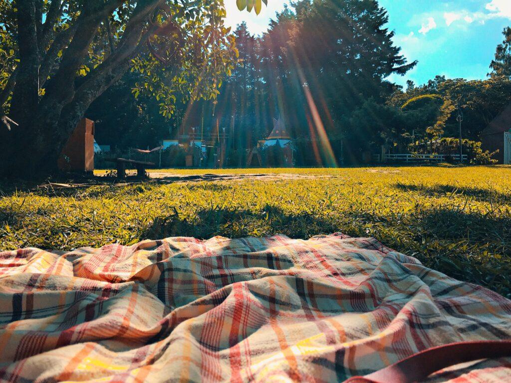 Picnic blanket overlooking a garden
